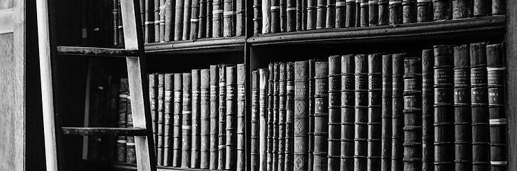 bookshelf-1082309_1920-mono.jpg