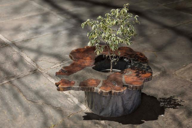 Wood Concretely