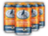 Community Beer Co. Sundial 6 Pack Cans