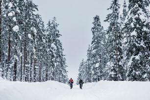 Rovaniemi 150, 2018