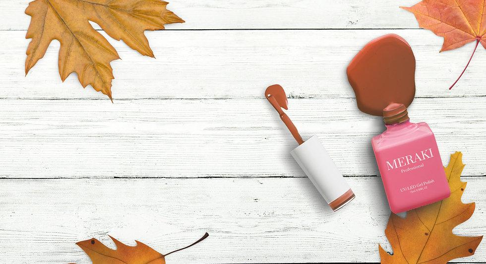 autumn 2.jpg