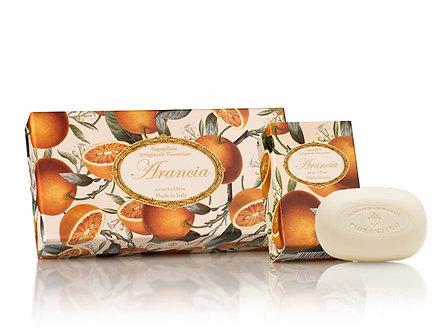 SAF洗顏皂 禮盒組 - 柑橘