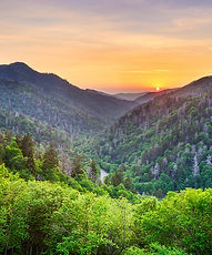 Tennessee.jfif
