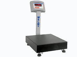 Balança Eletrônica Welmy W100 com coluna