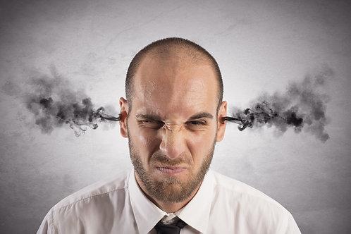AMQ (Anger Management Questionnaire)