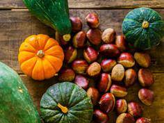 秋の養生とアロマケア