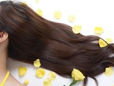夏に疲れた頭皮と髪におすすめのオイルケア