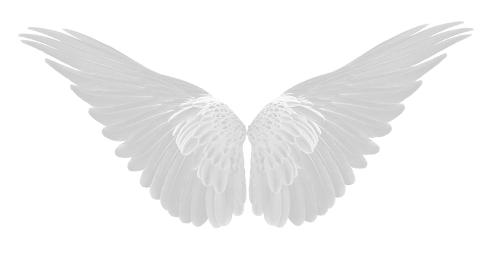 wings%202_edited.png