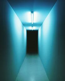 narrow-hallway-914113.jpg