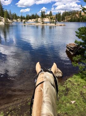 Sierra Mountains riding!