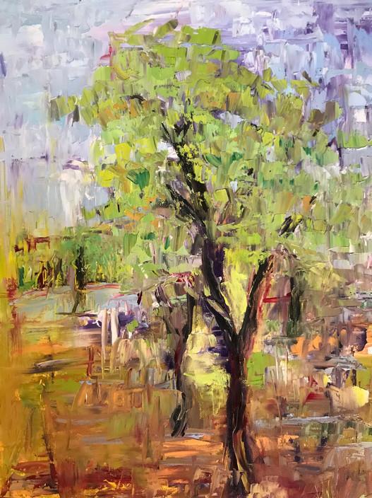 Painting 48 (16x20) Oil _Willow Tree_.JPG
