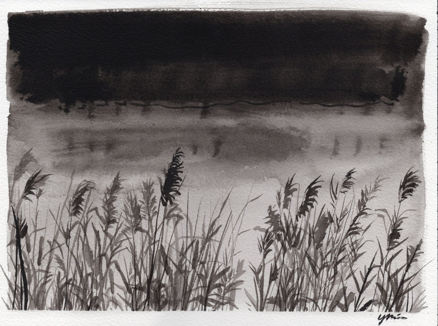 Reeds on the Water
