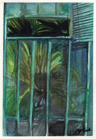 Palms in the Window