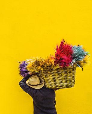 Porter ses couleurs