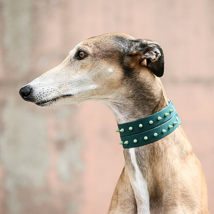 Forest Green Duo Spike collar