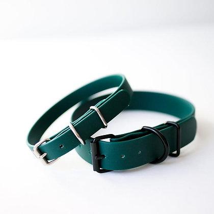 Forest dark green collar