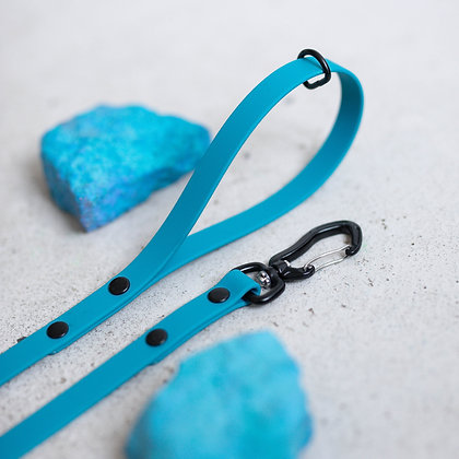 Blue Lagoon Leash