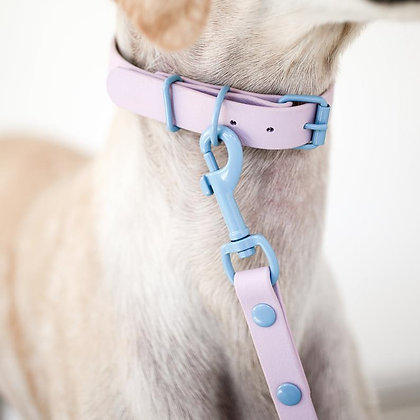 Lavender x Pale Blue hardware collar & leash set