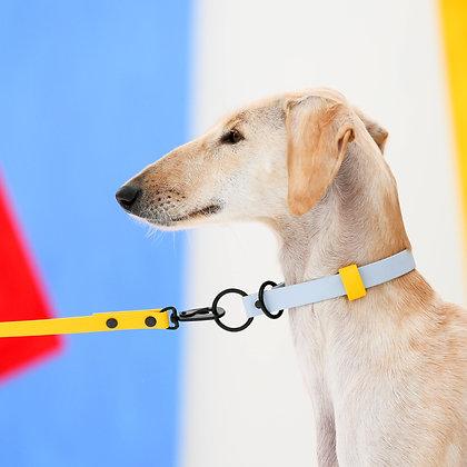 Sunshine Yellow leash