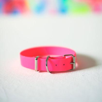 Neon Pink collar