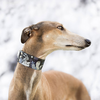 Wild and free collar