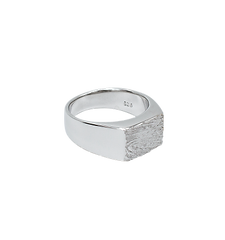 LE mens ring.png