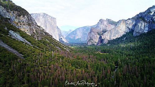 Yosemite - Half Dome Valley