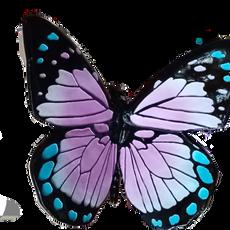 Butterfly Prop