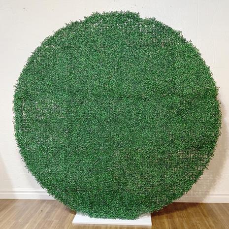 Round Greenery Wall