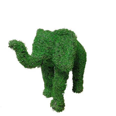 Alfie the Green Elephant