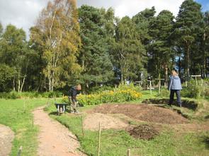 Heil- und Gewürzkräutergarten Pishwanton Wood