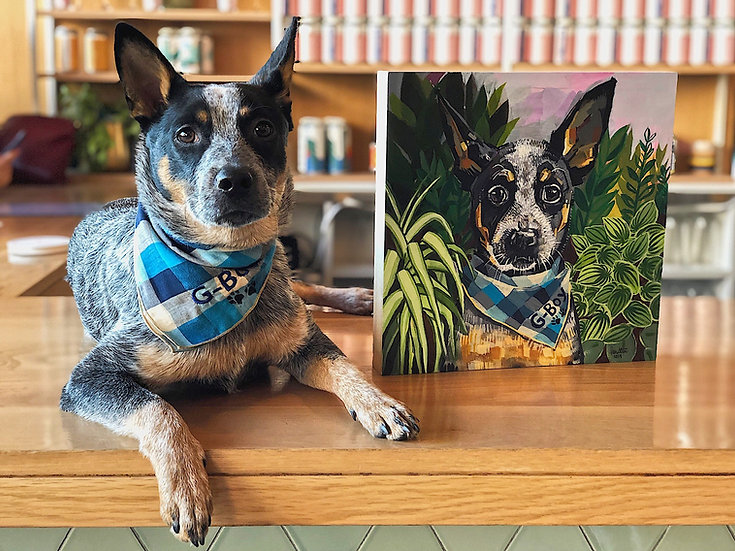 Pet Portrait