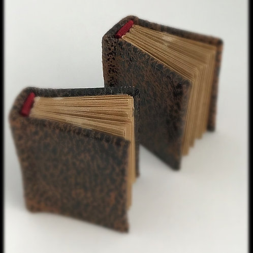 Mini Livros