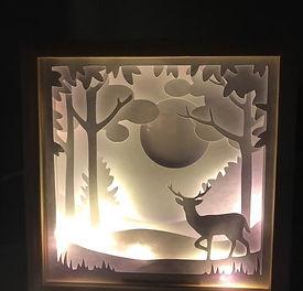 Caixa de Luz.jpg