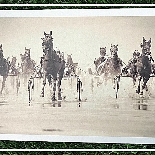 Quadro de metal HORSES