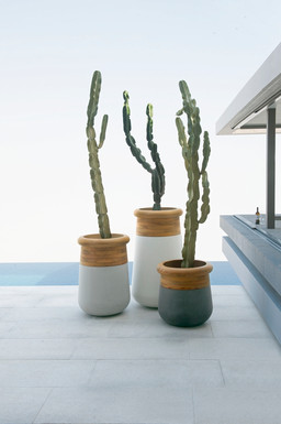 Soma Planters