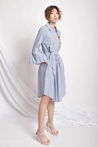 Vetta Embroidered Asymmetric Dress