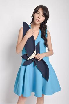 Chser A-Line Dress