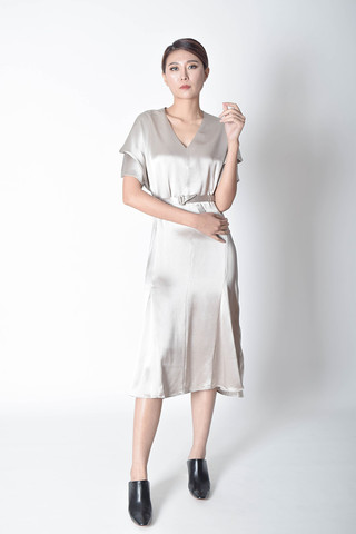 Rory Sleeves Satin Dress