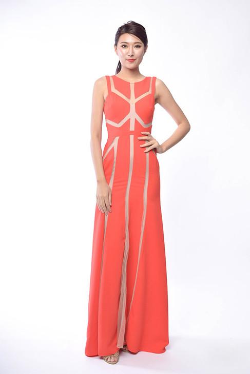 Jamesina Sleeveless Long Dress