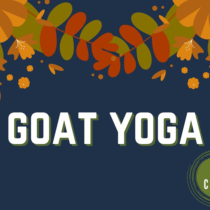 Fall Goat Yoga (2nd Class)