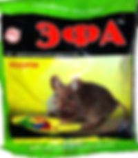 эфа-700x800.jpg
