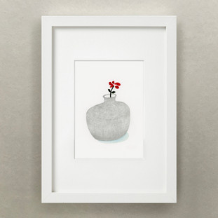 Plante Journal / Red Flower