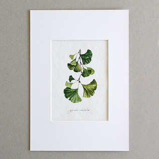 Botanical No.2