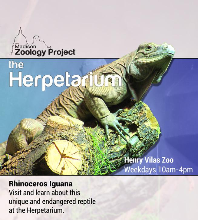 Iguana Poster.jpg