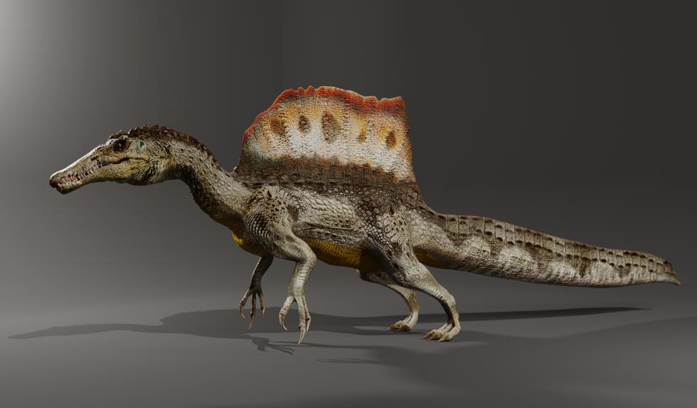 Spinosaurus2.png