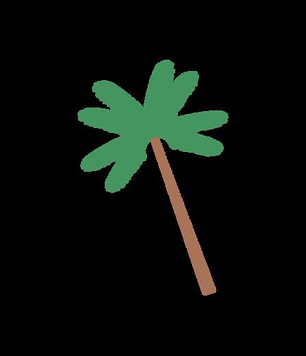 palma-21.png