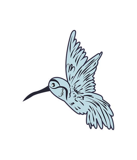colibri-21-21.png