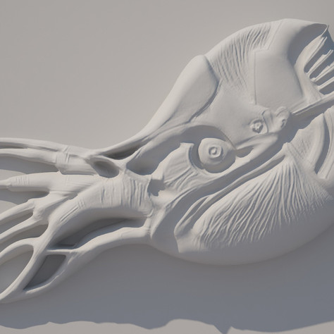 Nautilus_mechanicus_ц.jpg