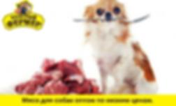 мясо для собак оптом.png